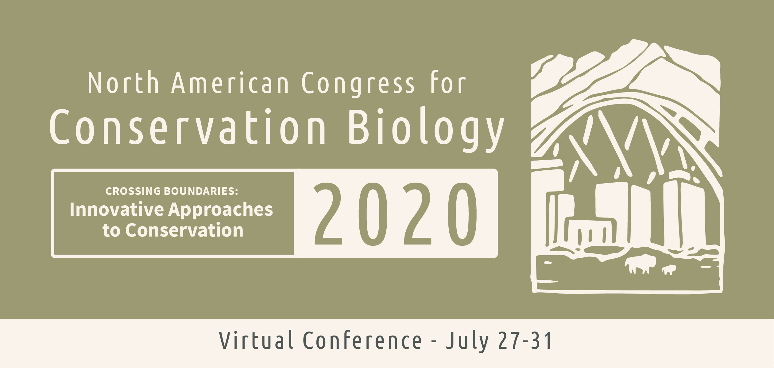 NACCB 2020 virtual web banner