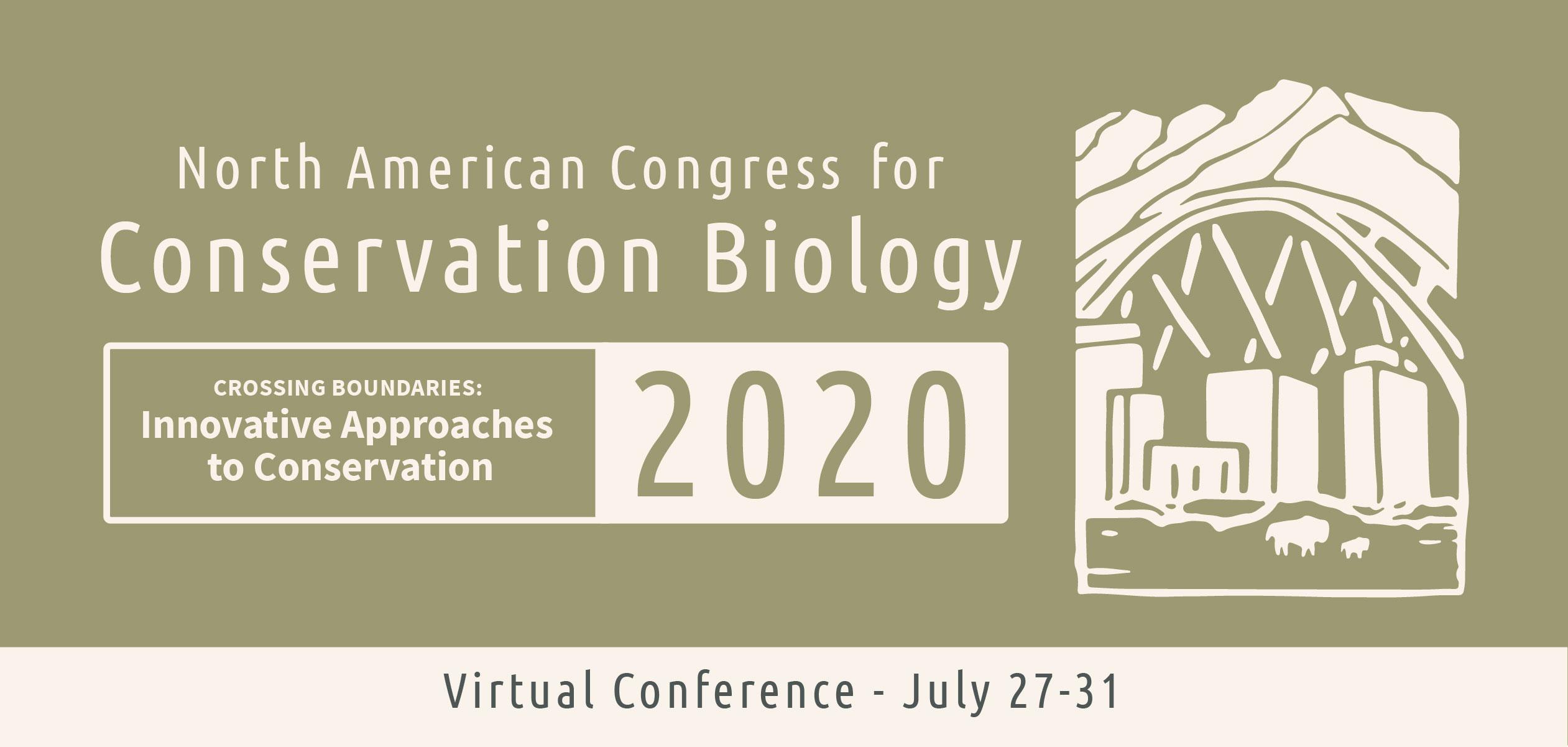 NACCB 2020 virtual web banner